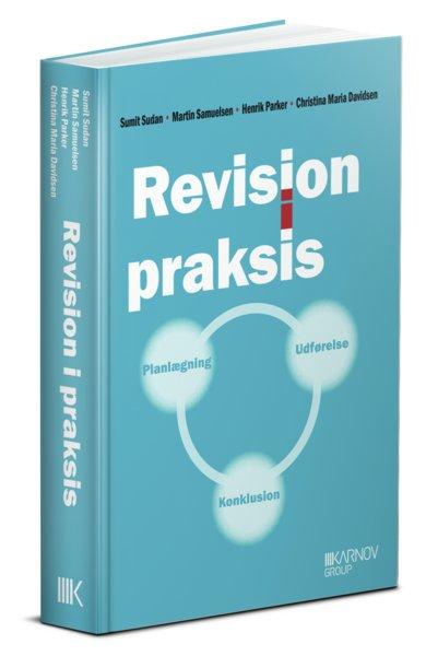 Revision I Praksis - Planlægning, Udførelse, Konklusion - Christina Maria Davidsen - Bog