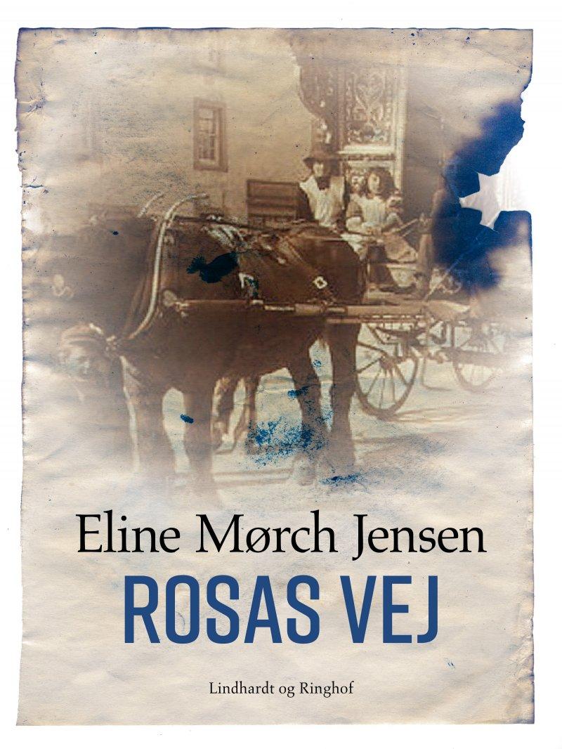Billede af Rosas Vej - Eline Mørch Jensen - Bog