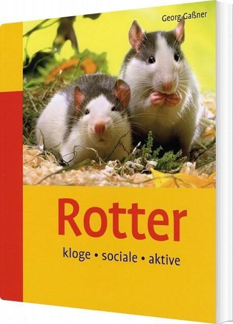 Rotter - Georg Gassner - Bog