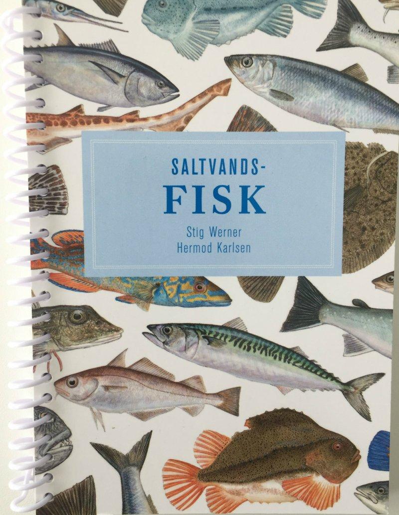 Billede af Saltvandsfisk - Karlsen - Bog