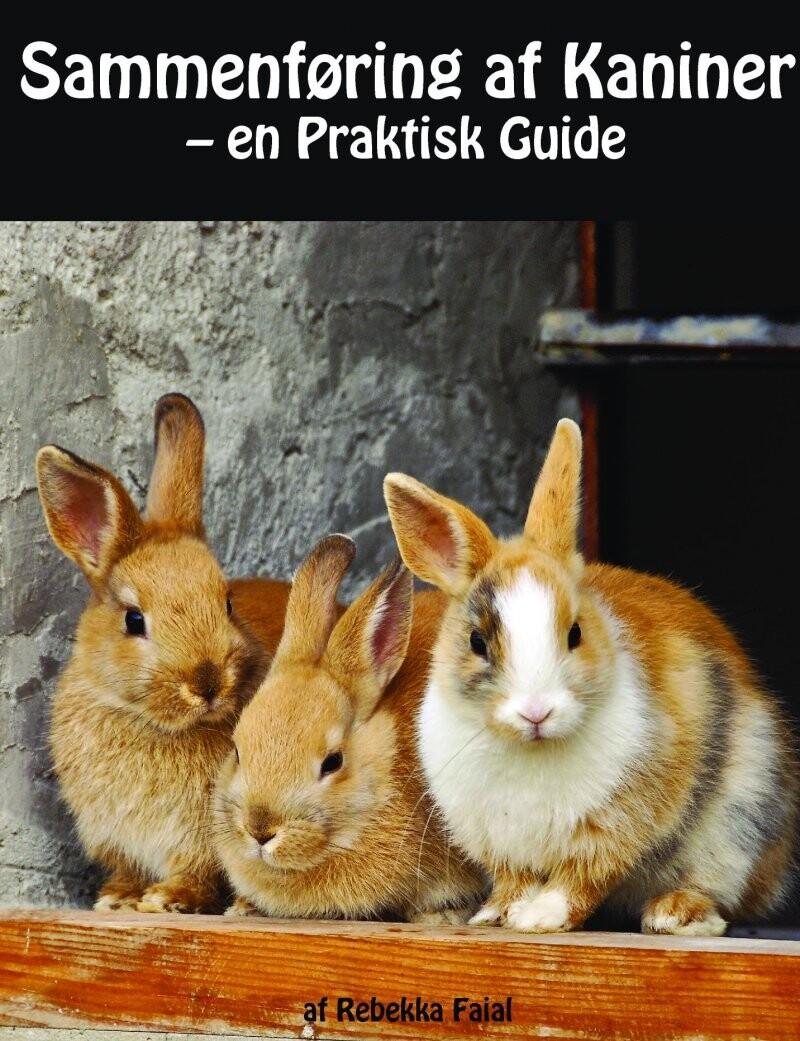 Image of   Sammenføring Af Kaniner - En Praktisk Guide - Rebekka Faial - Bog