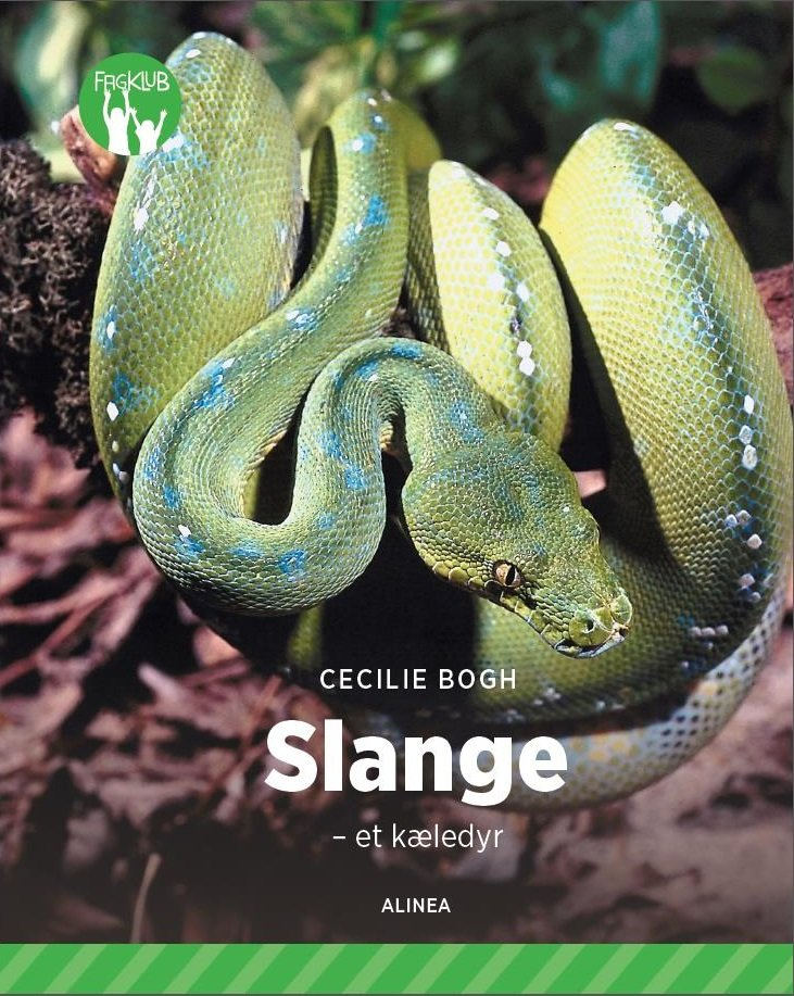 Image of   Slange - Et Kæledyr - Grøn Fagklub - Cecilie Bogh - Bog