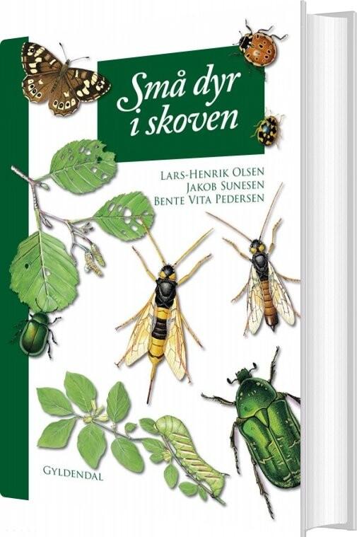 Billede af Små Dyr I Skoven - Lars-henrik Olsen - Bog