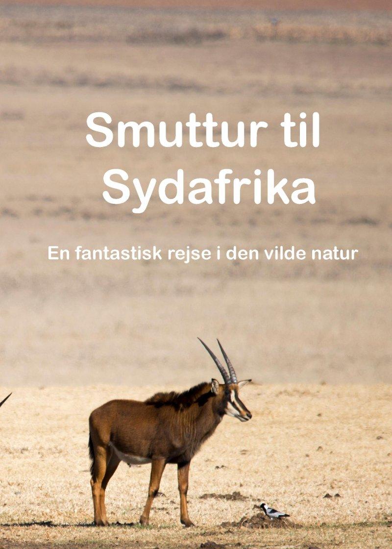 Smuttur Til Sydafrika - Steve Jørgensen - Bog