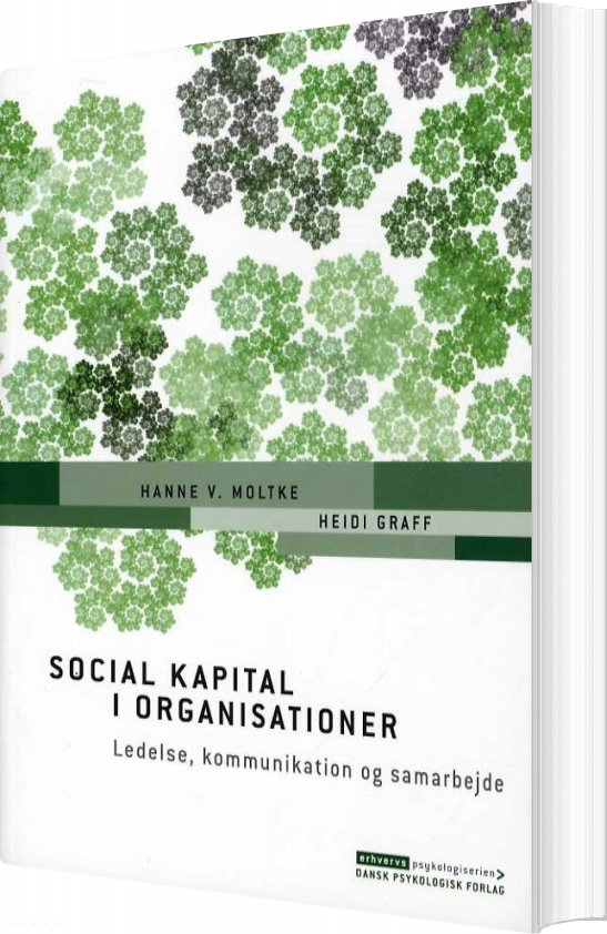 Image of   Social Kapital I Organisationer - Hanne V. Moltke - Bog