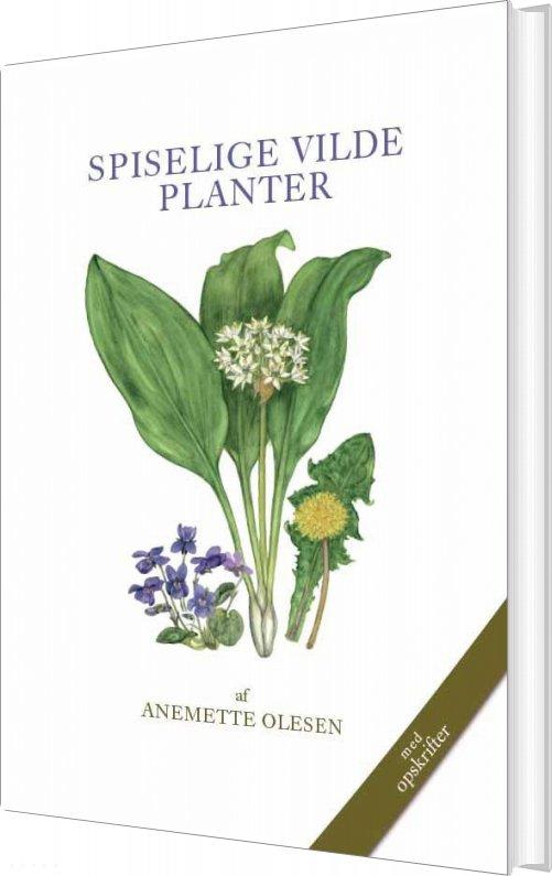 Spiselige Vilde Planter - Anemette Olesen - Bog