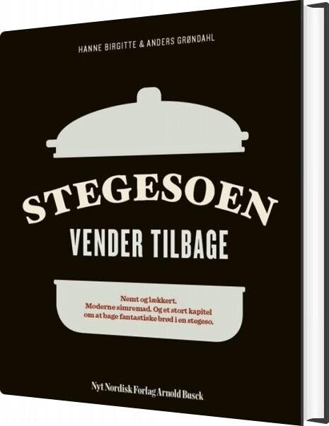 Stegesoen Vender Tilbage - Anders Grøndahl - Bog