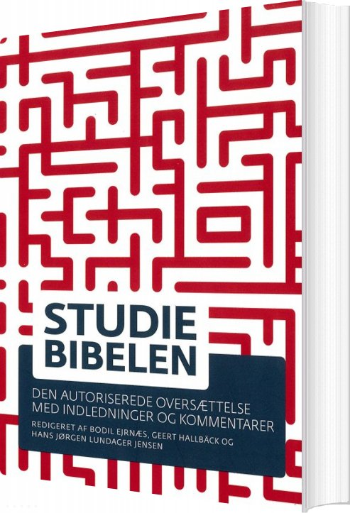 Studiebibelen - Bodil Ejrnæs - Bog