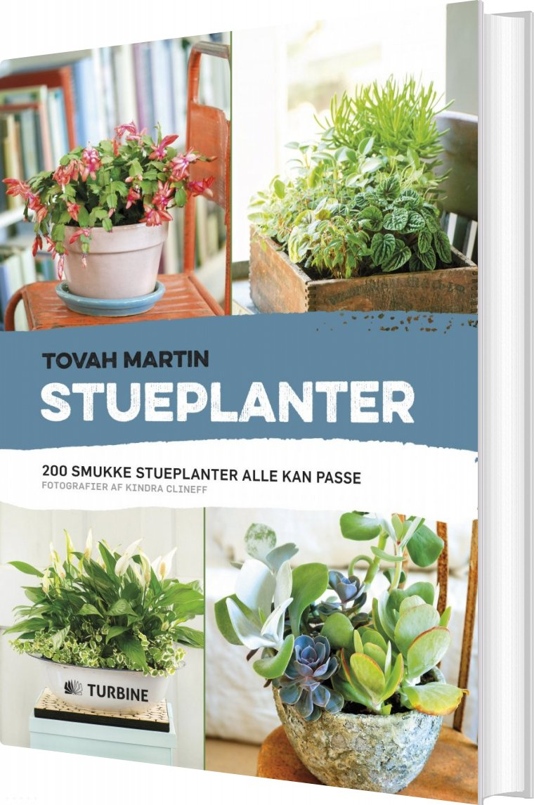 Stueplanter - Tovah Martin - Bog