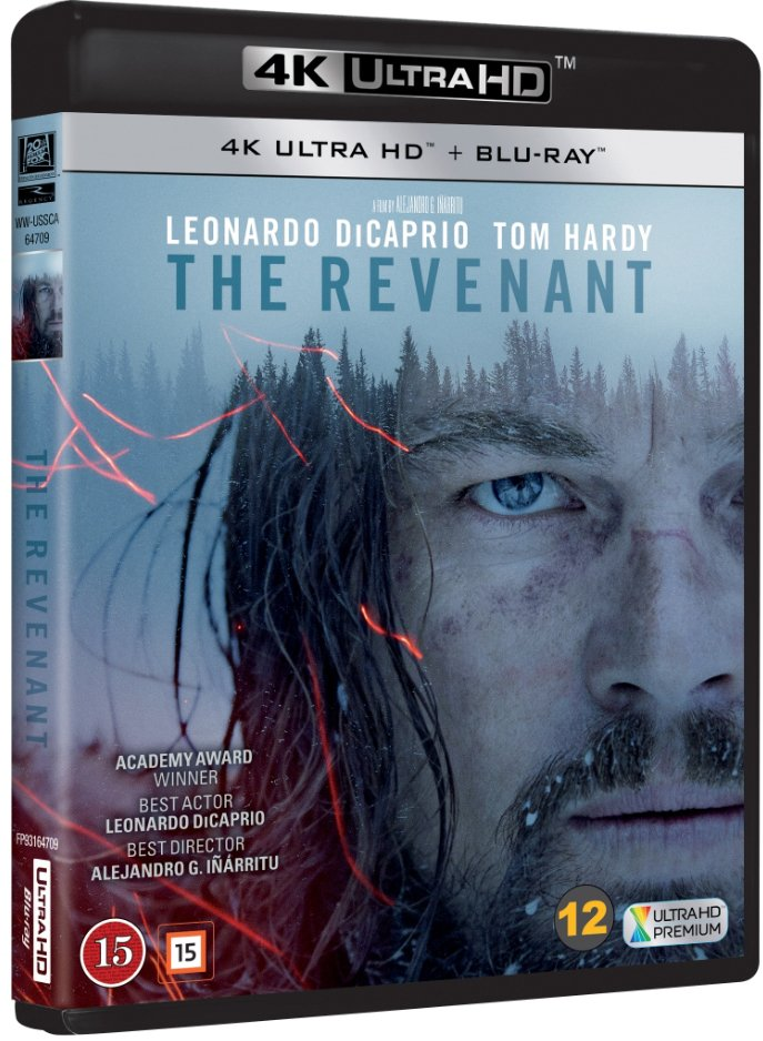 Image result for revenant 4k