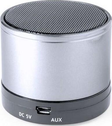 Trådløs Bluetooth Højttaler Med Fm Radio Usb Og Micro Sd 3w – Sølv