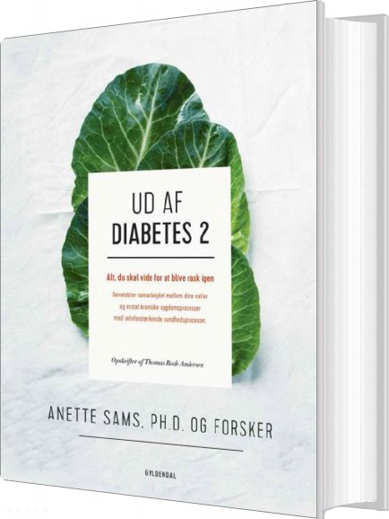 Ud Af Diabetes 2 - Anette Sams - Bog