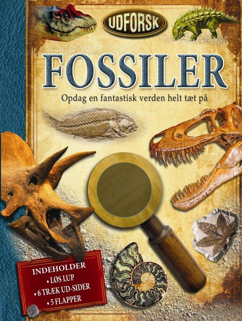 Image of   Udforsk Fossiler - Douglas Palmer - Bog