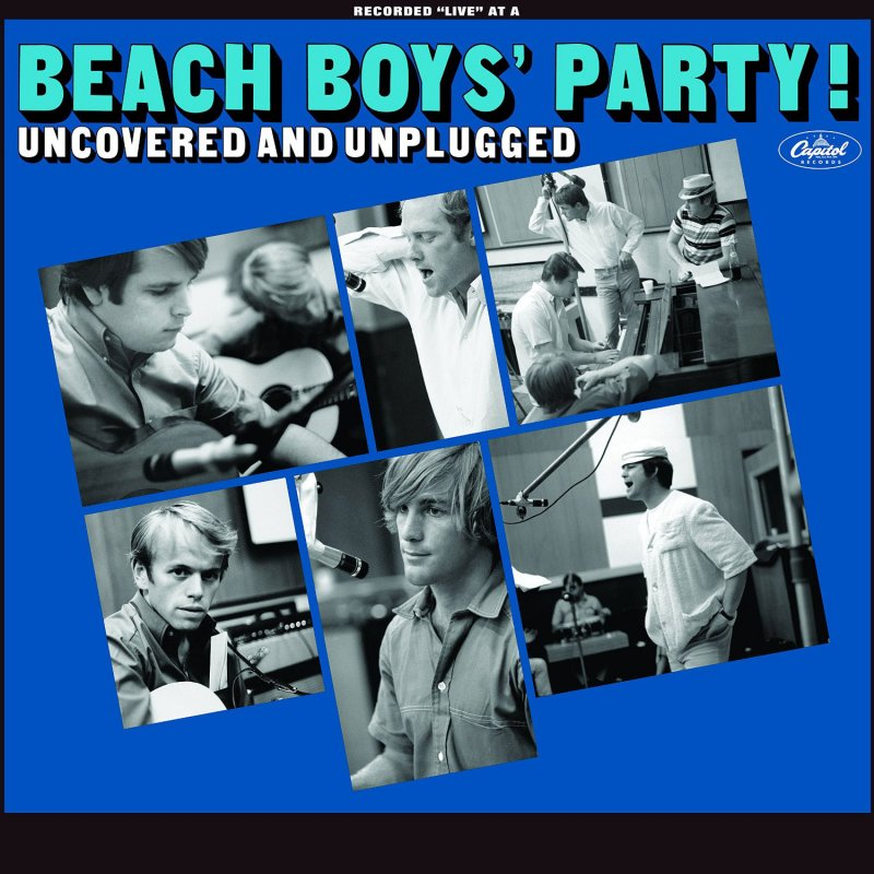 Image of   The Beach Boys - Party - Uncovered & Unplugged - Vinyl / LP
