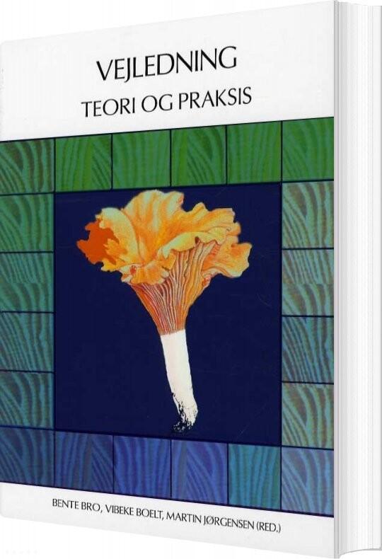 Vejledning - Teori Og Praksis - Vibeke Petersen M. Fl - Bog