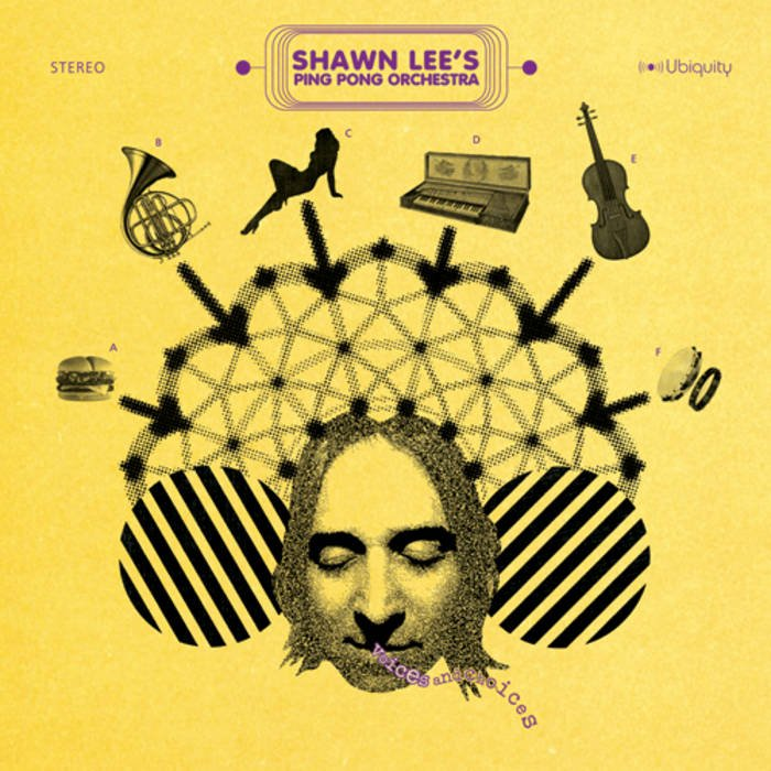 Image of   Shawn Lees Ping Pong Orchestra - Voices And Choices - CD