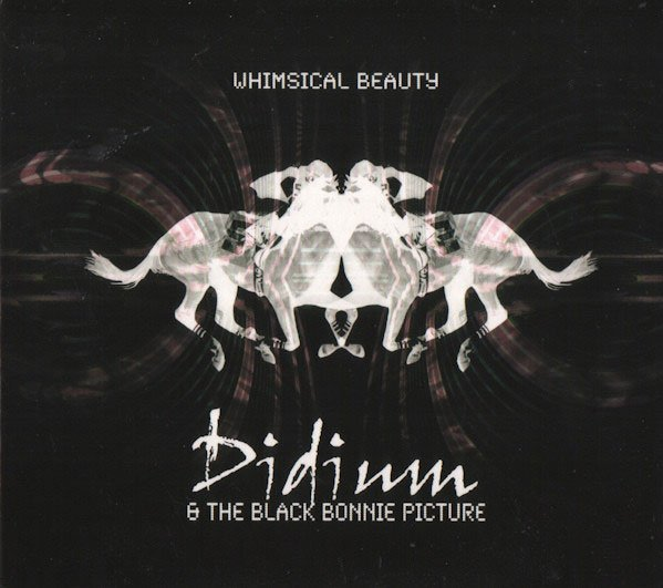 Image of   Didium & The Black Bonnie Picture - Whimsical Beauty - CD