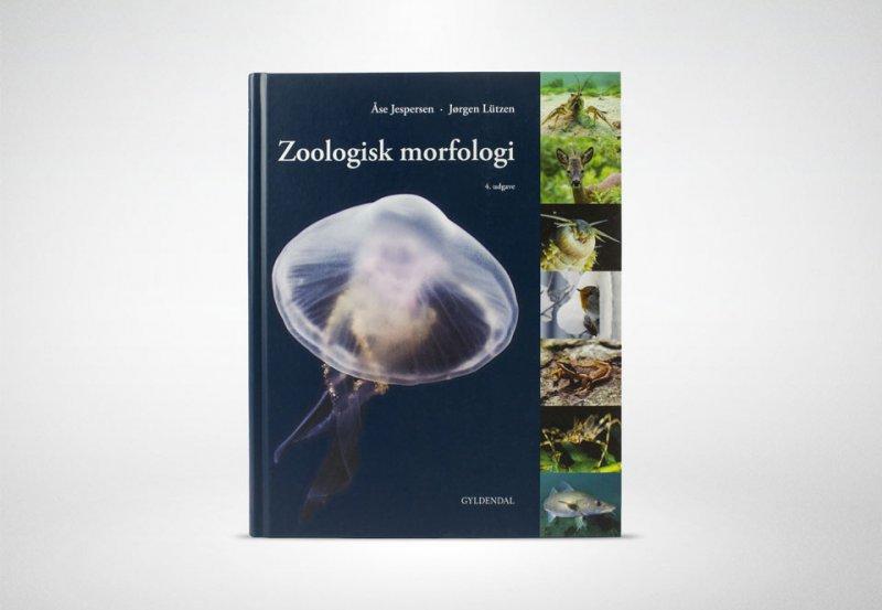 zoologisk morfologi 4 udgave